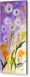 Acrylic Print featuring the painting Dandelion Puff Balls Watercolor by Ginette Callaway