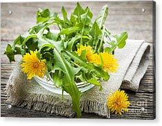 Dandelions Greens And Flowers Acrylic Print