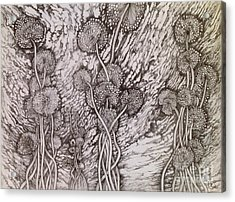 Acrylic Print featuring the drawing Dandelions by Iya Carson