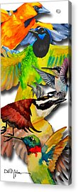 Da131 Multi-birds By Daniel Adams Acrylic Print