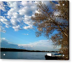 Acrylic Print featuring the photograph Danube by Lucy D