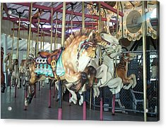 Acrylic Print featuring the photograph Dapled Pony by Barbara McDevitt