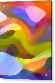 Dappled Light 6 Acrylic Print by Amy Vangsgard