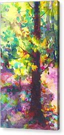 Dappled - Light Through Tree Canopy Acrylic Print by Talya Johnson