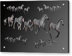 Dapples Acrylic Print by Betsy Knapp
