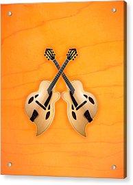 D'aquisto Acoustic Custom Acrylic Print by Doron Mafdoos
