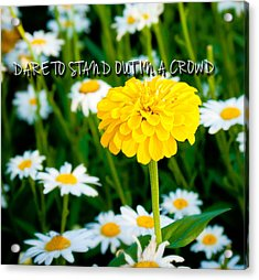 Dare To Stand Out In A Crowd Acrylic Print