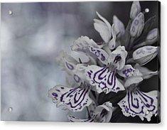 Dark Angel Of Flowers Acrylic Print