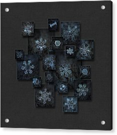 Snowflake Collage - Dark Crystals 2012-2014 Acrylic Print