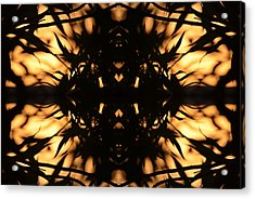 Dark Flame Of Nature Acrylic Print