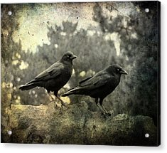 Dark Nature Acrylic Print by Gothicrow Images