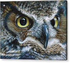 Dark Owl Acrylic Print