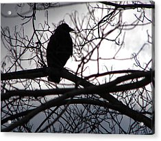 Acrylic Print featuring the photograph Dark Sentinel by Brian Stevens