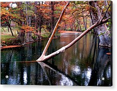 Dark Waters Acrylic Print by David  Norman