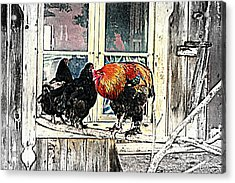 Darling, Stay At Home, It's Cold Outside Acrylic Print