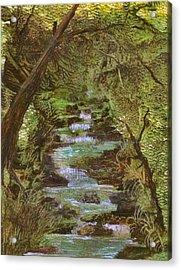 Dartmoor River Acrylic Print by Carol Rowland