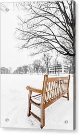 Acrylic Print featuring the photograph Dartmouth Winter Wonderland by Edward Fielding
