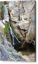 Darwin Falls Acrylic Print