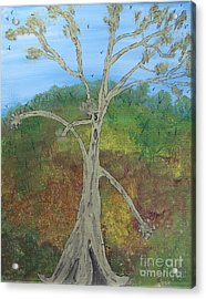 Dash The Running Tree Acrylic Print