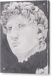 David Acrylic Print by Crosson Nipper