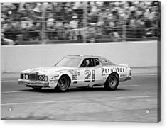 David Pearson Acrylic Print by Retro Images Archive