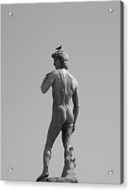 Acrylic Print featuring the photograph David by Victoria Lakes