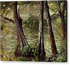 Davids River Acrylic Print