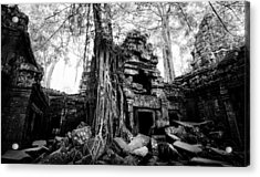 Acrylic Print featuring the photograph Dawn At Ta Prohm by Julian Cook