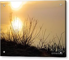 Acrylic Print featuring the photograph Dawn Of A New Day by Robyn King