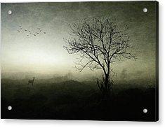 Dawn.......... Acrylic Print