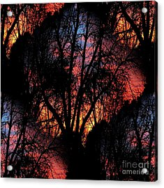 Sunrise - Dawn's Early Light Acrylic Print by Luther Fine Art