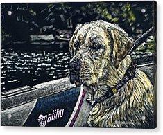 Dawson At The Lake Acrylic Print by Robert Goudreau
