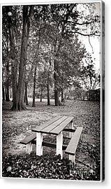 Day At The Park Acrylic Print by John Rizzuto