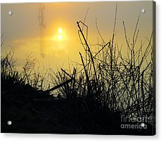 Acrylic Print featuring the photograph Daybreak by Robyn King