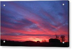 Day Dawning Acrylic Print by Diannah Lynch