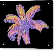 Acrylic Print featuring the photograph Day Lily #3 by Jim Whalen