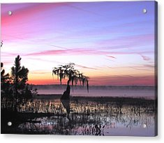 Daybreak Acrylic Print by Will Boutin Photos