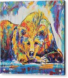 Daydreaming Bear Acrylic Print