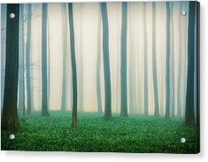 Daydreaming Of Bluebells Acrylic Print