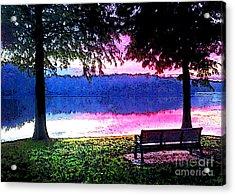 Daylight Come Acrylic Print by Nancy E Stein