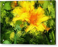 Dayliles Acrylic Print