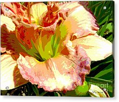 Acrylic Print featuring the photograph Daylily 1 by Sally Simon