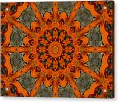 Acrylic Print featuring the photograph Daylily Orange Mandala by MM Anderson