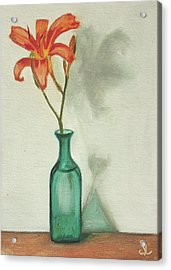 Daylily Acrylic Print by Sarah Lynch