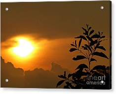 Day's Done My Sun Acrylic Print