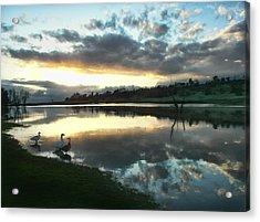 Days End At Horseshoe Lake  Acrylic Print
