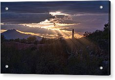 Acrylic Print featuring the photograph Days End by Dan McManus