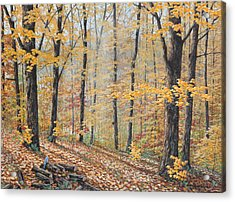 Days Of Autumn Acrylic Print