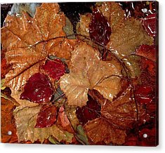 Days Of Autumn Acrylic Print by Patrick Mock