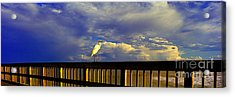 Acrylic Print featuring the photograph Daytona Beach Fl Bird Sun Glow Pier  by Tom Jelen